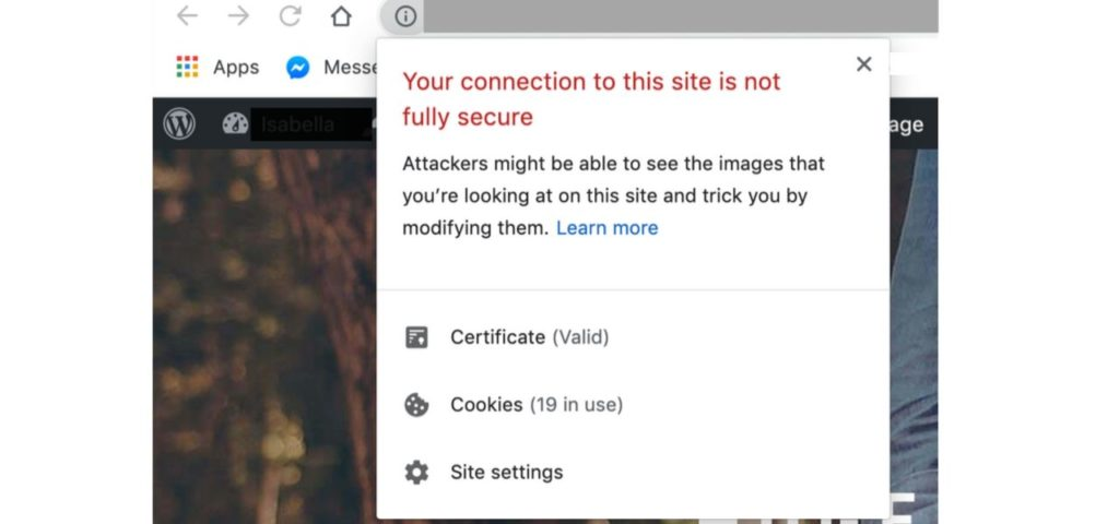 What Visitors See When No SSL Certificates are present
